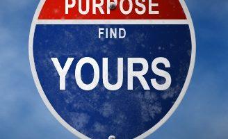 Job vs. Purpose